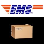 ems01